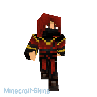 skin assassin ninja