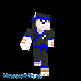 Chat Ninja ceinture bleue