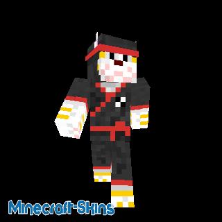 Chat Ninja Rouge