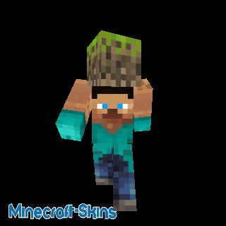 Steve portant un bloc de terre