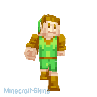 Link Classique - Zelda